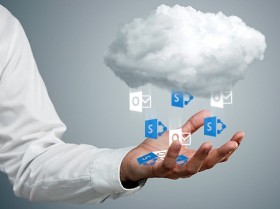 Consulted &Locally Hosted SharePoint